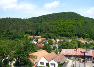 110 let založení SDH Borač (63)