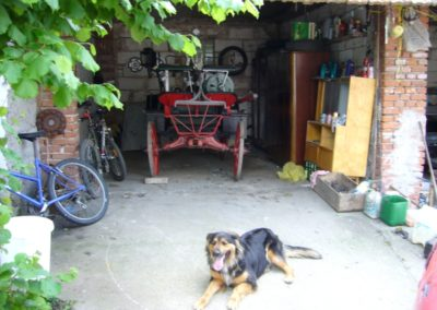 Renovace koňky (1)