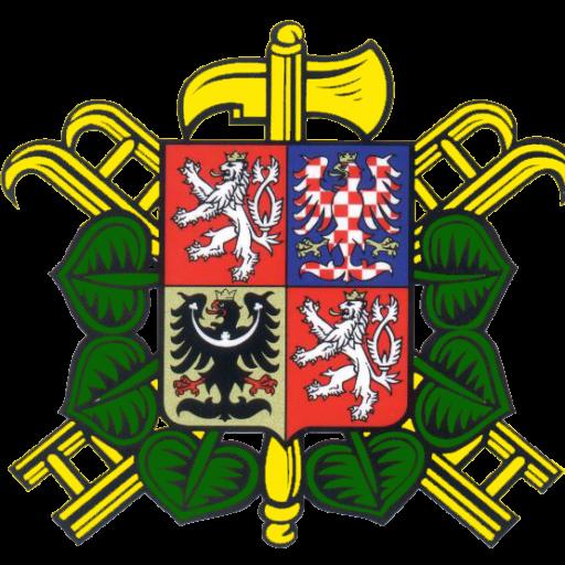 SDH Borač